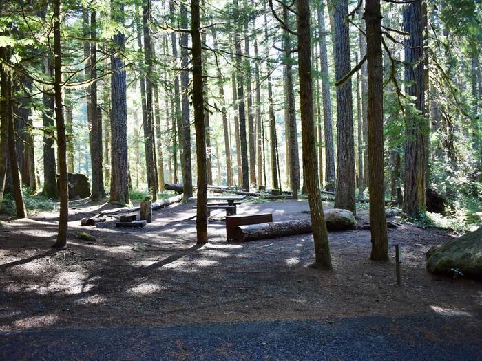 Ohanapecosh Campground - Site E006