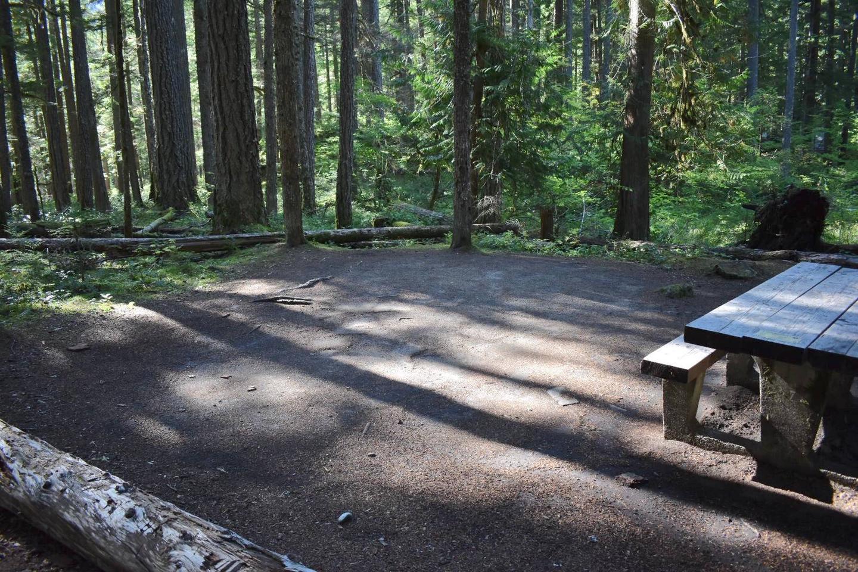 Ohanapecosh Campground - Site E006 Tent Space