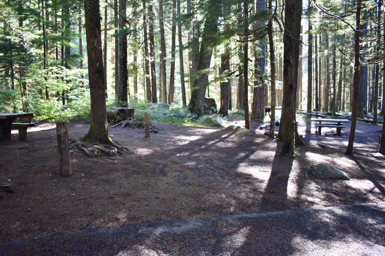 Ohanapecosh Campground - Site E008 Parking Area