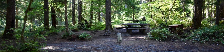 Ohanapecosh Campground - Site E010