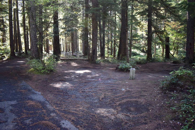 Ohanapecosh Campground - Site E010 Parking Area