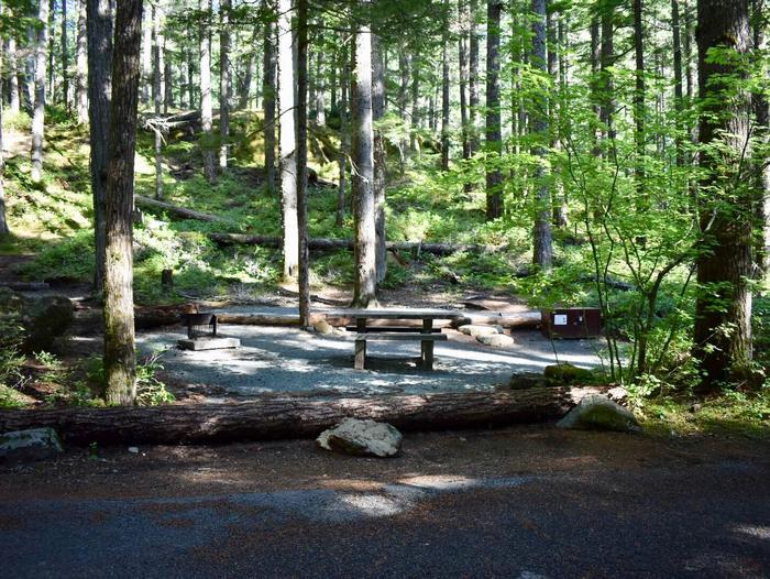 Ohanapecosh Campground - Site E011