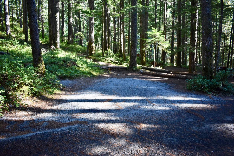 Ohanapecosh Campground - Site E011 Parking Area