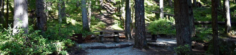 Ohanapecosh Campground - Site E012