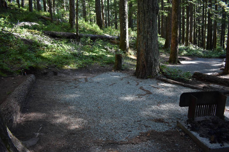 Ohanapecosh Campground - Site E012 Tent Space
