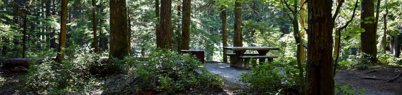 Ohanapecosh Campground - Site E013