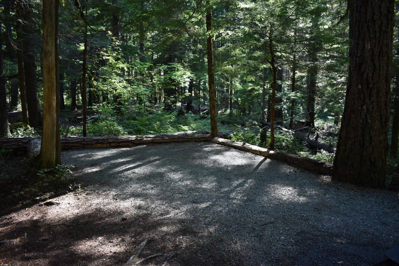 Ohanapecosh Campground - Site E013 Tent Space