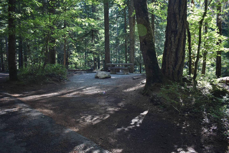 Ohanapecosh Campground - Site E013 Parking Area