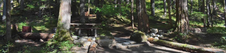 Ohanapecosh Campground - Site E014