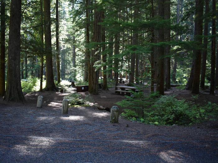 Ohanapecosh Campground - Site E015