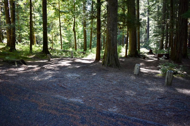 Ohanapecosh Campground - Site E015 Parking Area