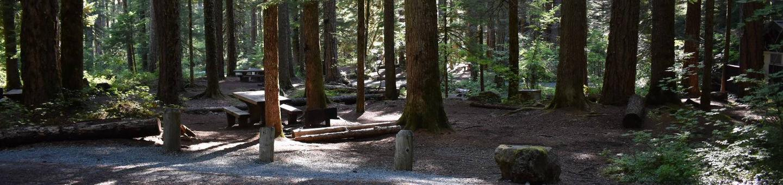 Ohanapecosh Campground - Site E016