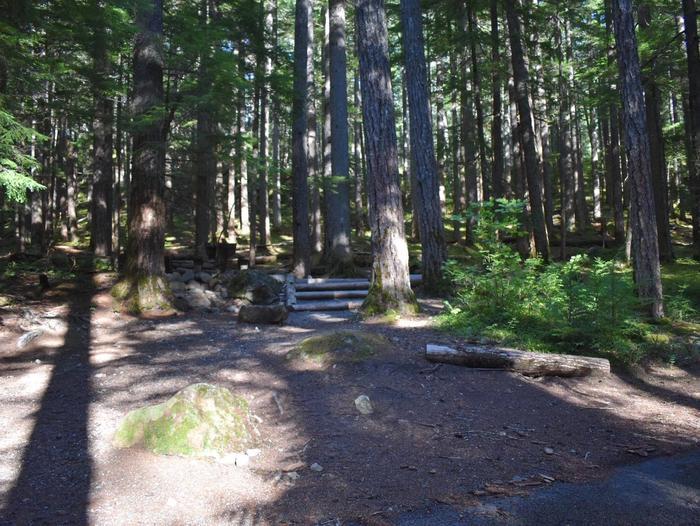 Ohanapecosh Campground - Site E017