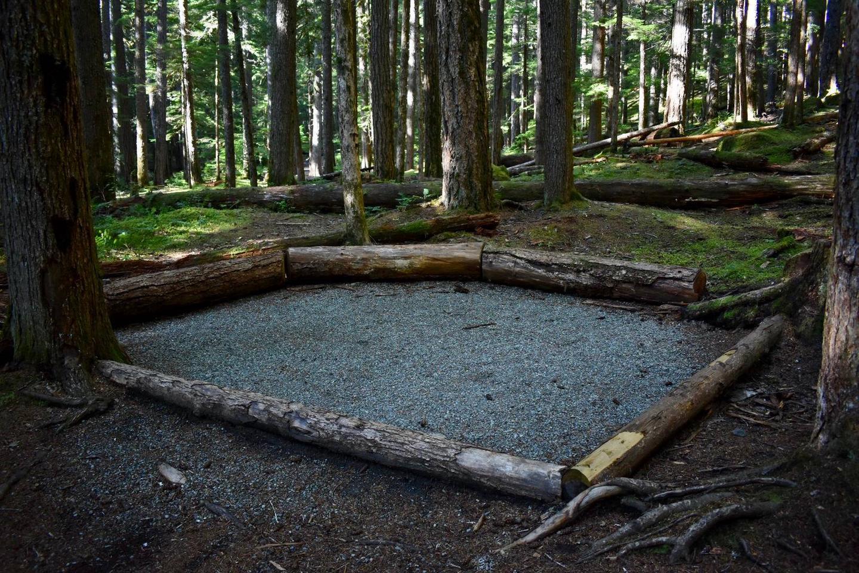 Ohanapecosh Campground - Site E017 Tent Space