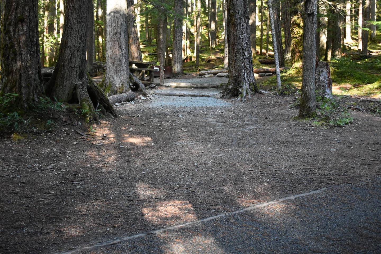 Ohanapecosh Campground - Site E018 Parking Area