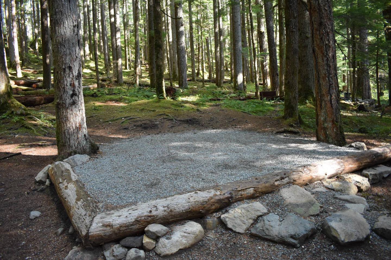 Ohanapecosh Campground - Site E018 Tent Space