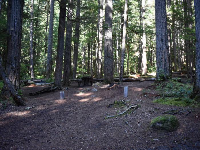 Ohanapecosh Campground - Site E019
