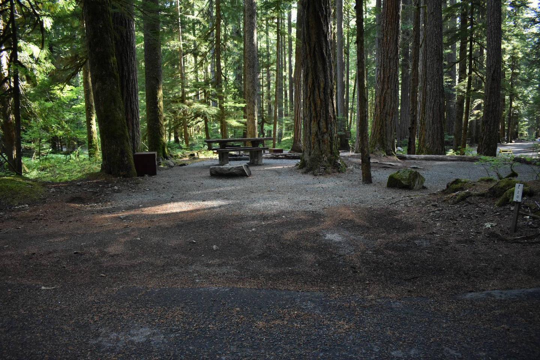 Ohanapecosh Campground - Site E020 Parking Area