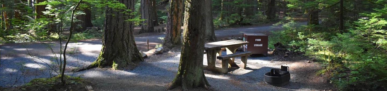 Ohanapecosh Campground - Site E021