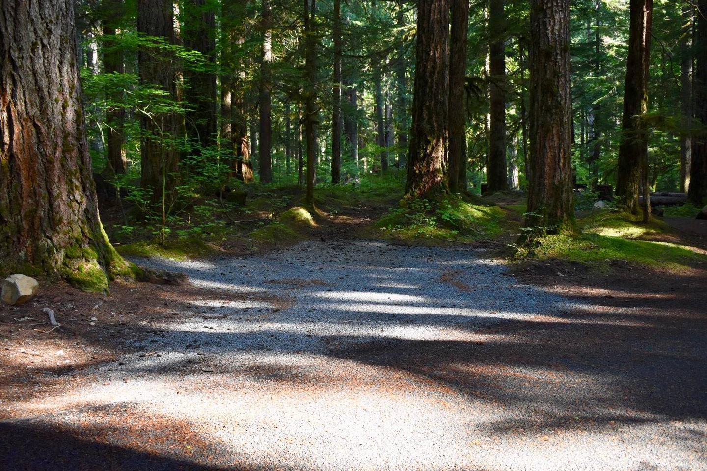 Ohanapecosh Campground - Site E021 Parking Area