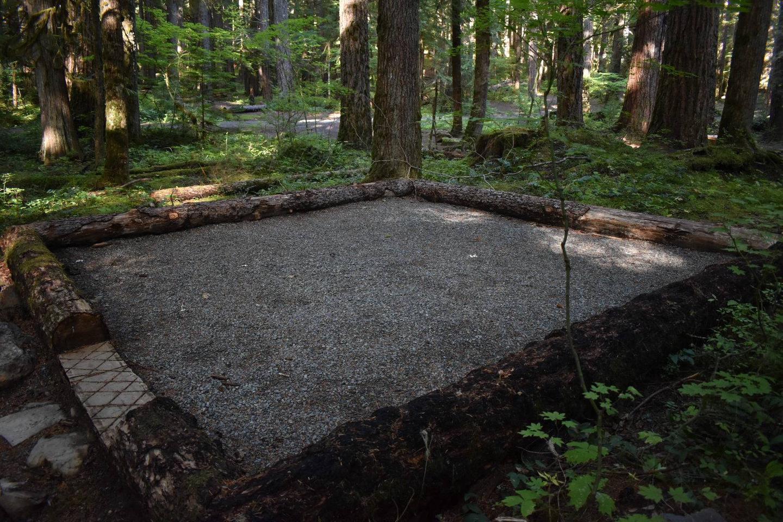 Ohanapecosh Campground - Site E021 Tent Space