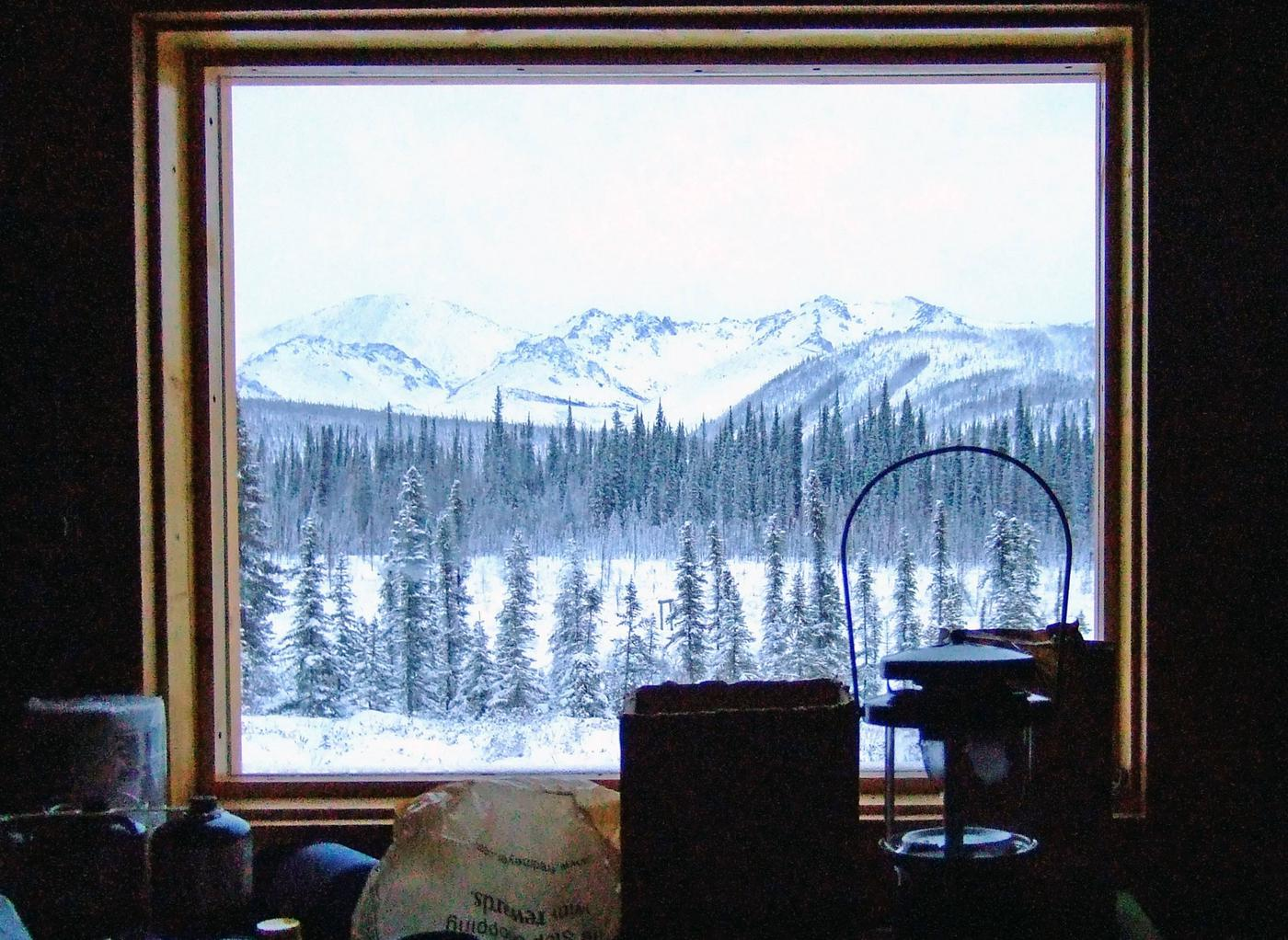 Window view with forest and snowy mountainsPicture window view from Wolf Run Cabin