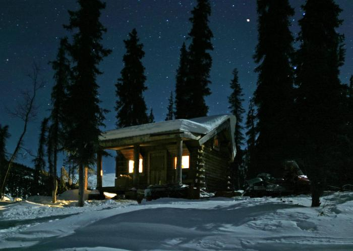 A cabin between tall spruce trees under a starry skyWindy Gap Cabin under the stars