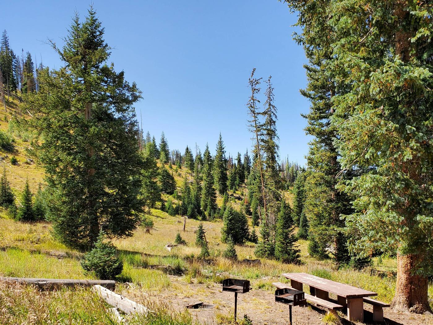 Flat Canyon Campground Site #2