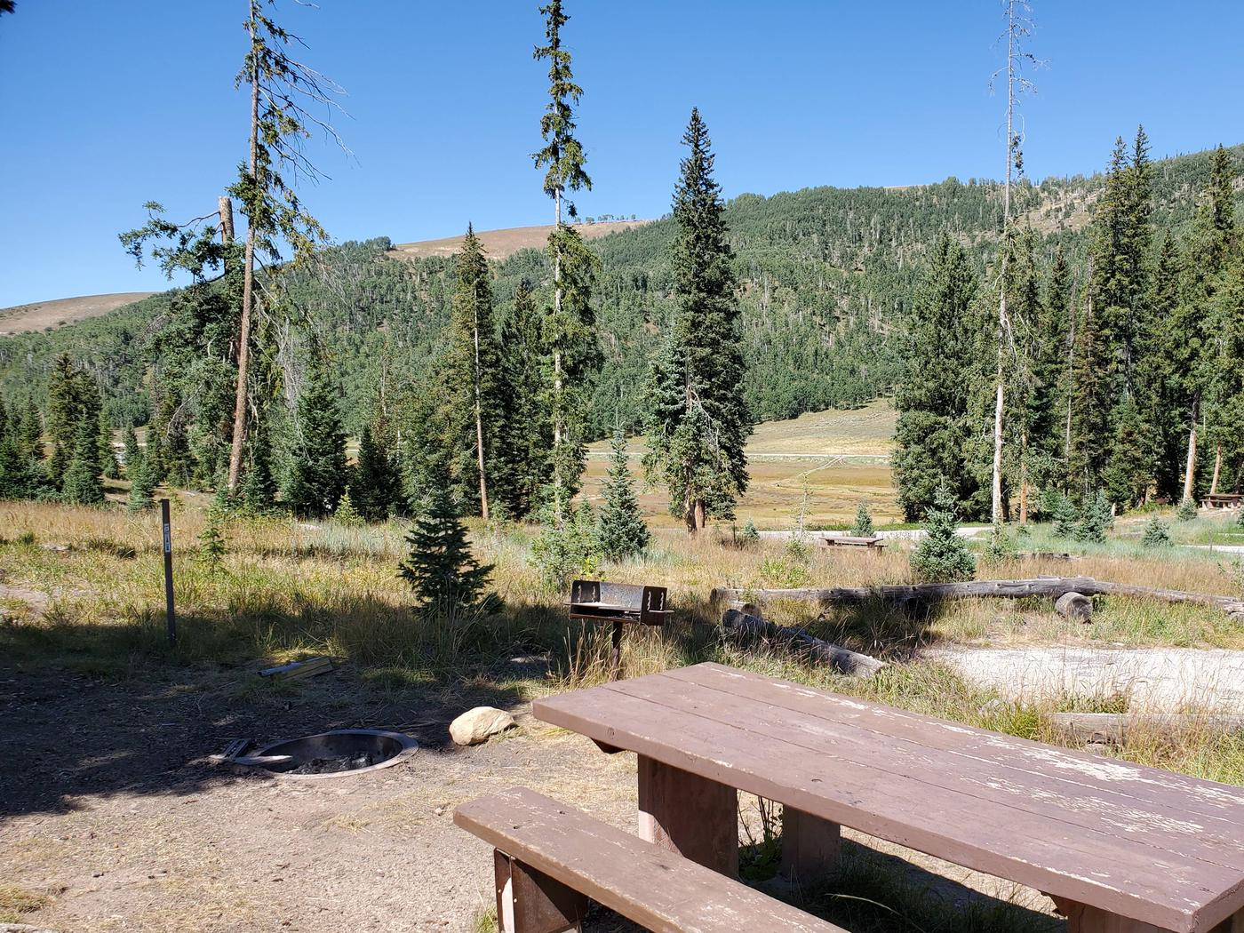 Flat Canyon Campground Site #5