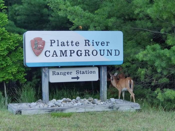 "Platte River Campground Entrance with deerSign reading ""Platte River Campground Ranger Station"" with a deer standing next to it"