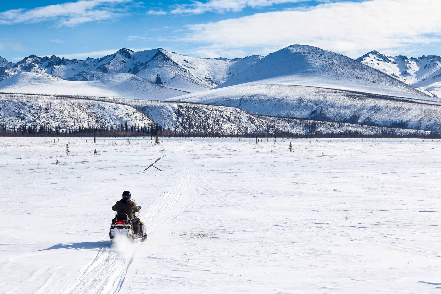 A snowmobile riders crosses a big meadow with mountains in the distance.The Colorado Creek Trail brings visitors into the heart of the White Mountains.
