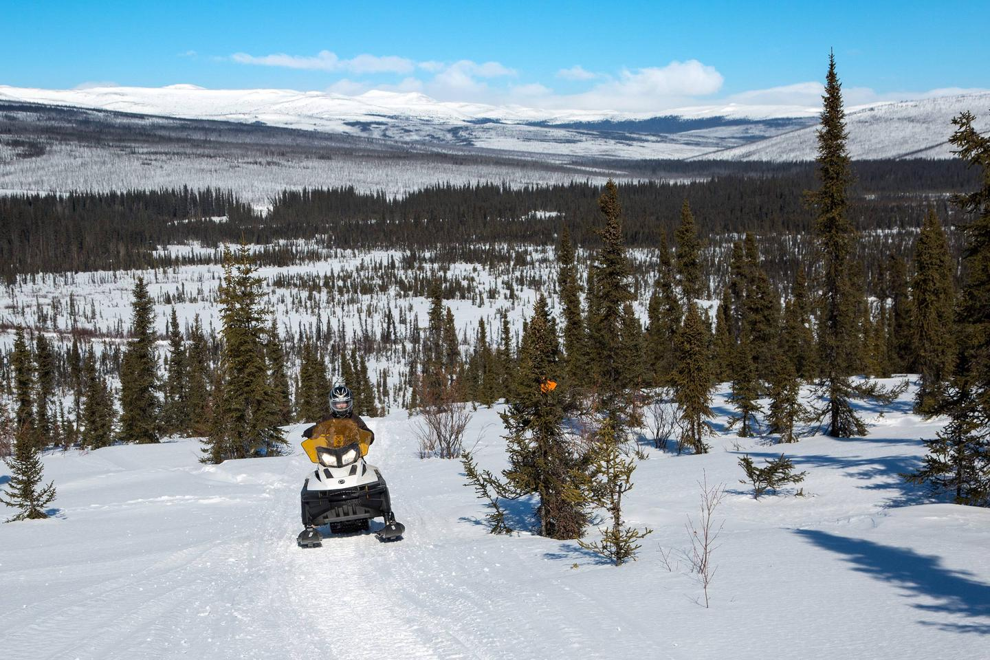 A snowmobile rider climbs a hill in front of a valley.The Bear Creek Trail, the access route to Richard's Cabin, drops down a big hill into the Bear Creek drainage a few miles from the cabin.