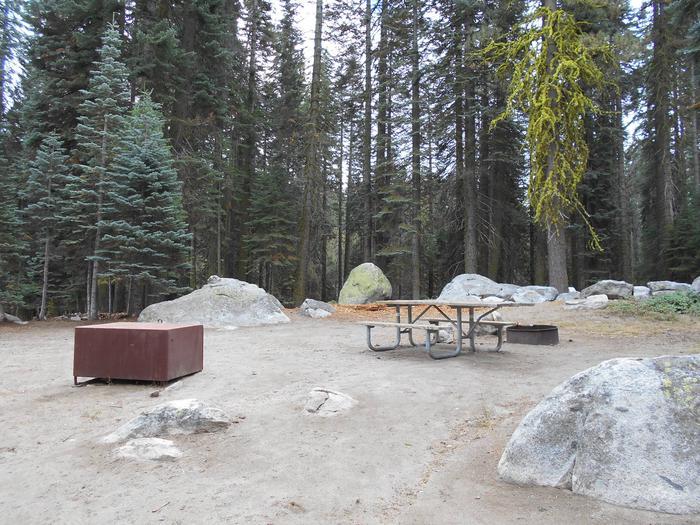 Site 213 Crane Flat