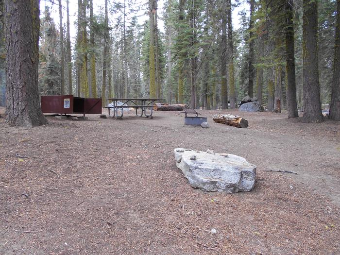 Site 215 Crane Flat