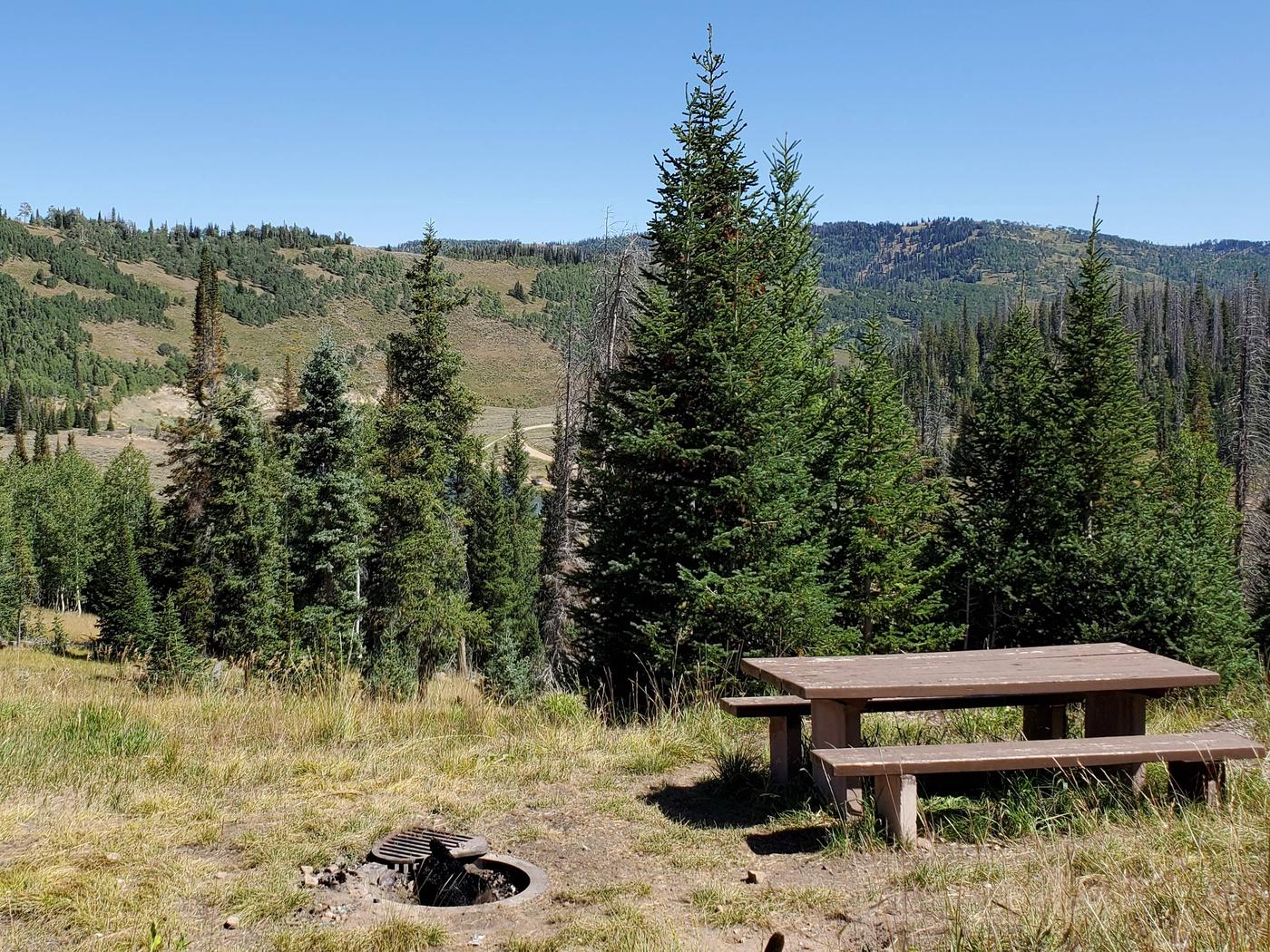 Flat Canyon Campground Site #7