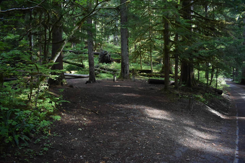 Ohanapecosh Campground - Site F001 Parking Area