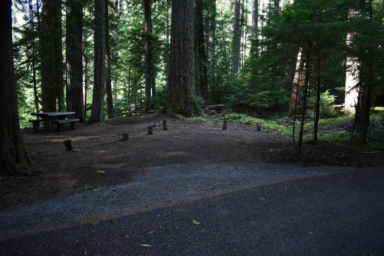 Ohanapecosh Campground - Site F008 Parking Area