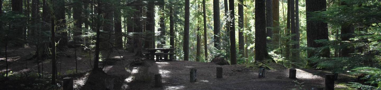 Ohanapecosh Campground - Site F009