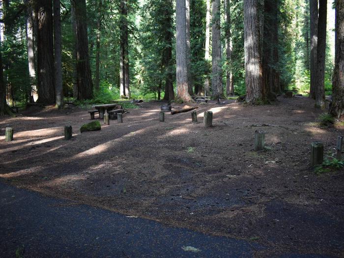 Ohanapecosh Campground - Site F010