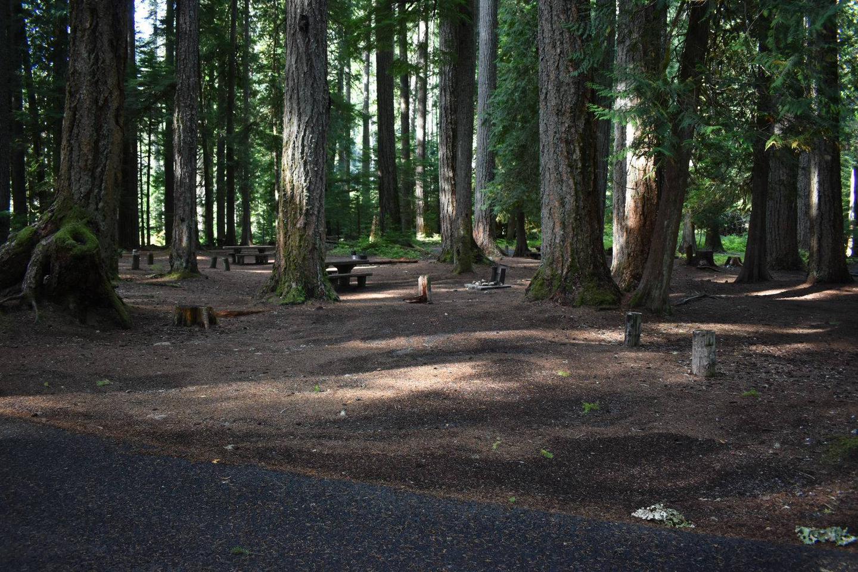 Ohanapecosh Campground - Site F012 Parking Area