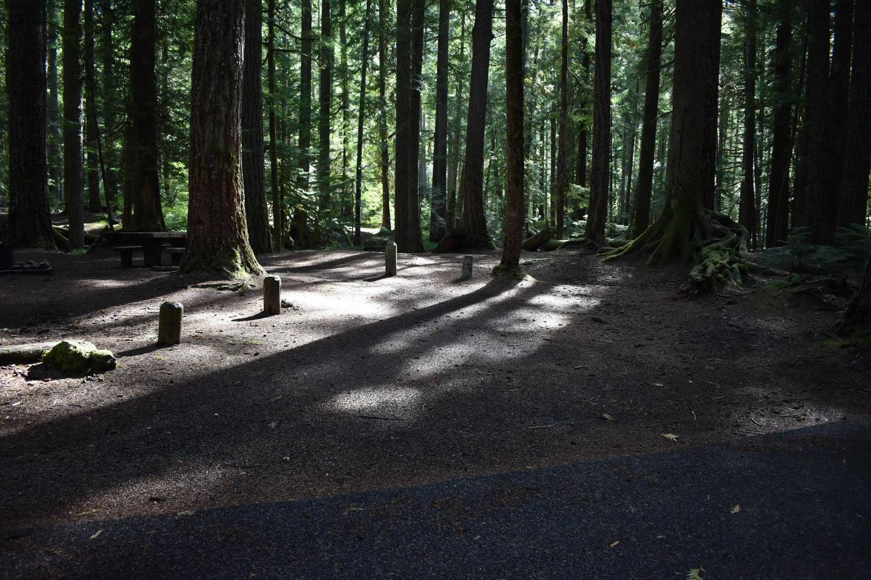 Ohanapecosh Campground - Site F013 Parking Area