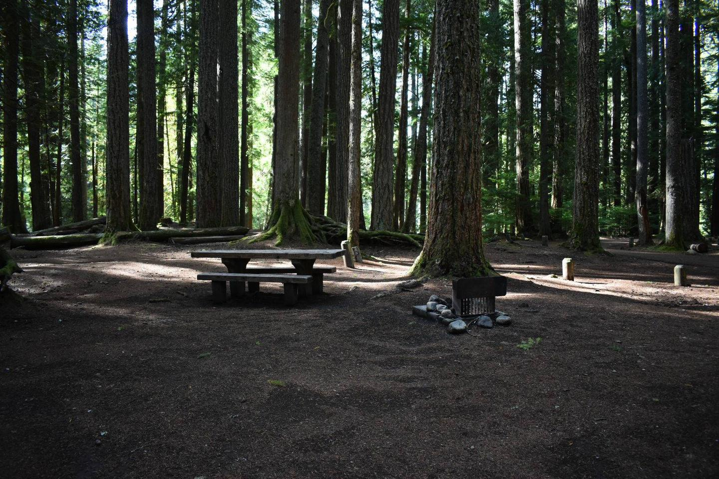 Campers are provided with a picnic table and a fire pit.