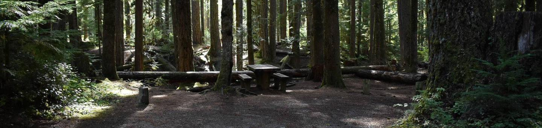 Ohanapecosh Campground - Site F016