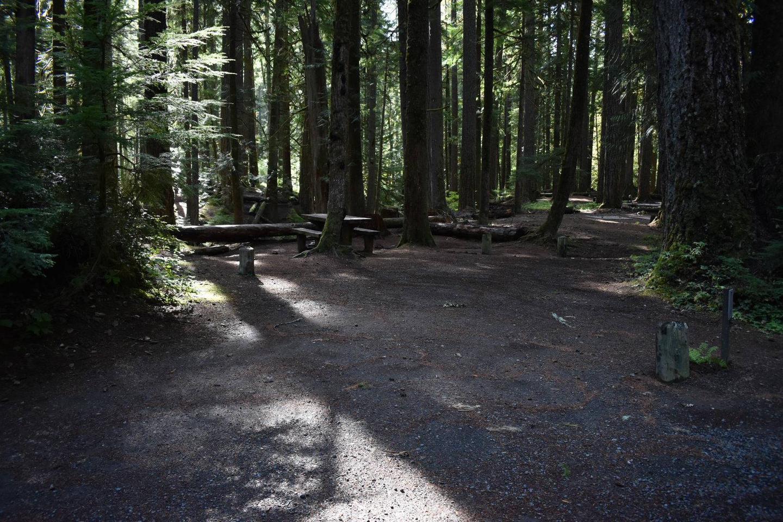 Ohanapecosh Campground - Site F016 Parking Area
