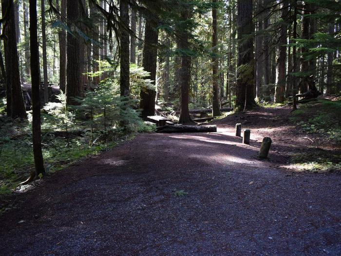 Ohanapecosh Campground - Site F017