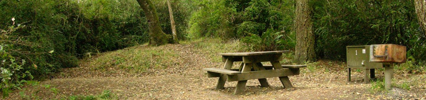 campsite with picnic table, food storage locker and BBQ grillGlen 1