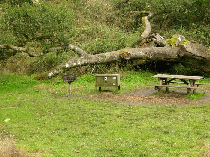 campsite with picnic table, food storage locker and BBQ grillGlen 3