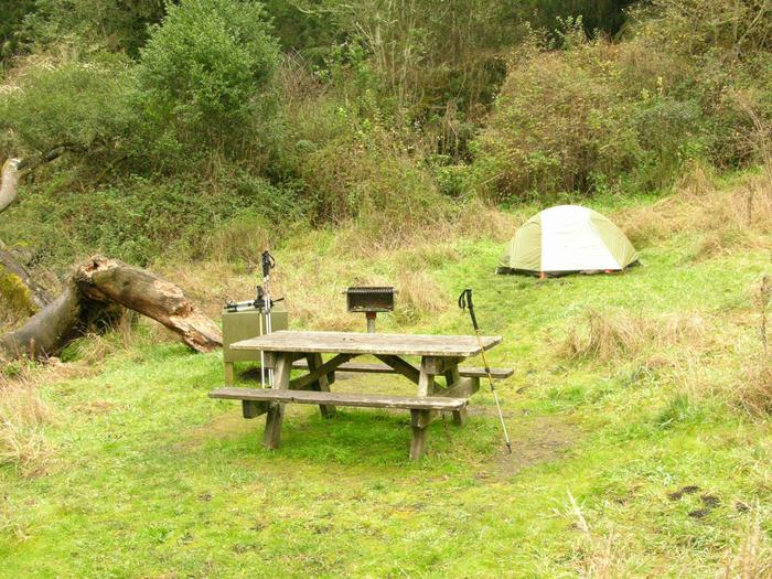 campsite with picnic table, food storage locker and BBQ grillGlen 4