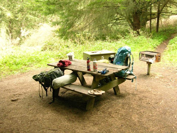 campsite with picnic table, food storage locker and BBQ grillGlen 5