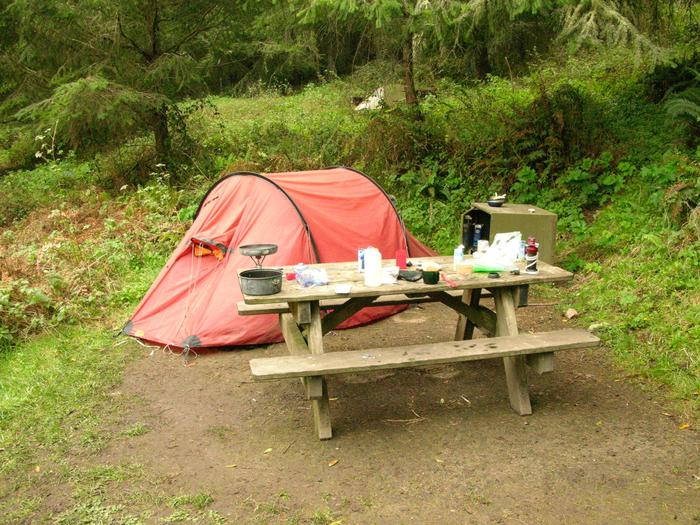 campsite with picnic table, food storage locker and BBQ grillGlen 6